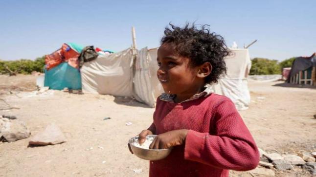 الأمم المتحدة: اليمن يقترب من نقطة اللاعودة