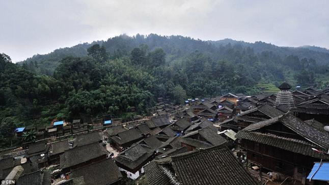 قرية صينية تستخدم عشبة سرية لتحديد جنس مواليدها