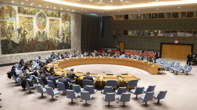 مجلس الأمن الدولي يدعو الأطراف المتنازعة في اليمن لوقف إطلاق النار