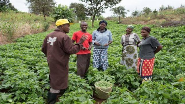 كينيا تبرم اتفاقا مع بعثة النقد الدولي للحصول على تمويلا 2.4 مليار دولار